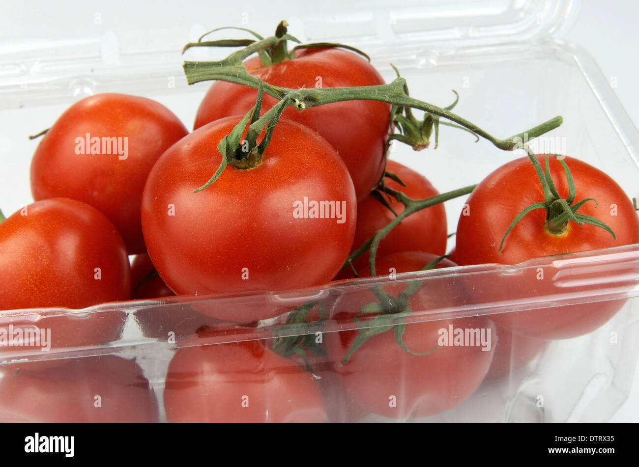 Vine tomatoes in plastic container. - Stock Image
