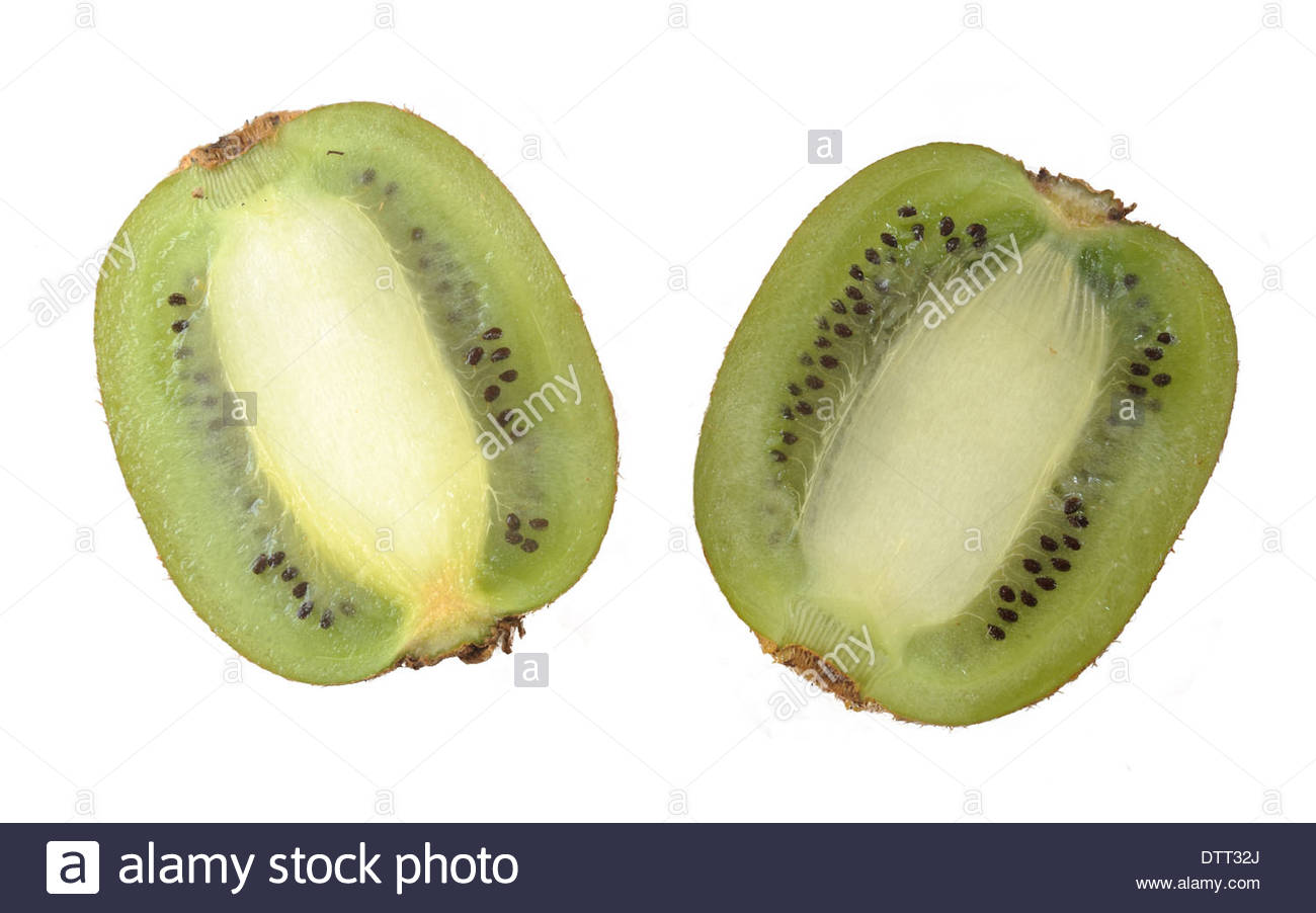 Cut-out kiwi fruit sliced in half on a white background. - Stock Image