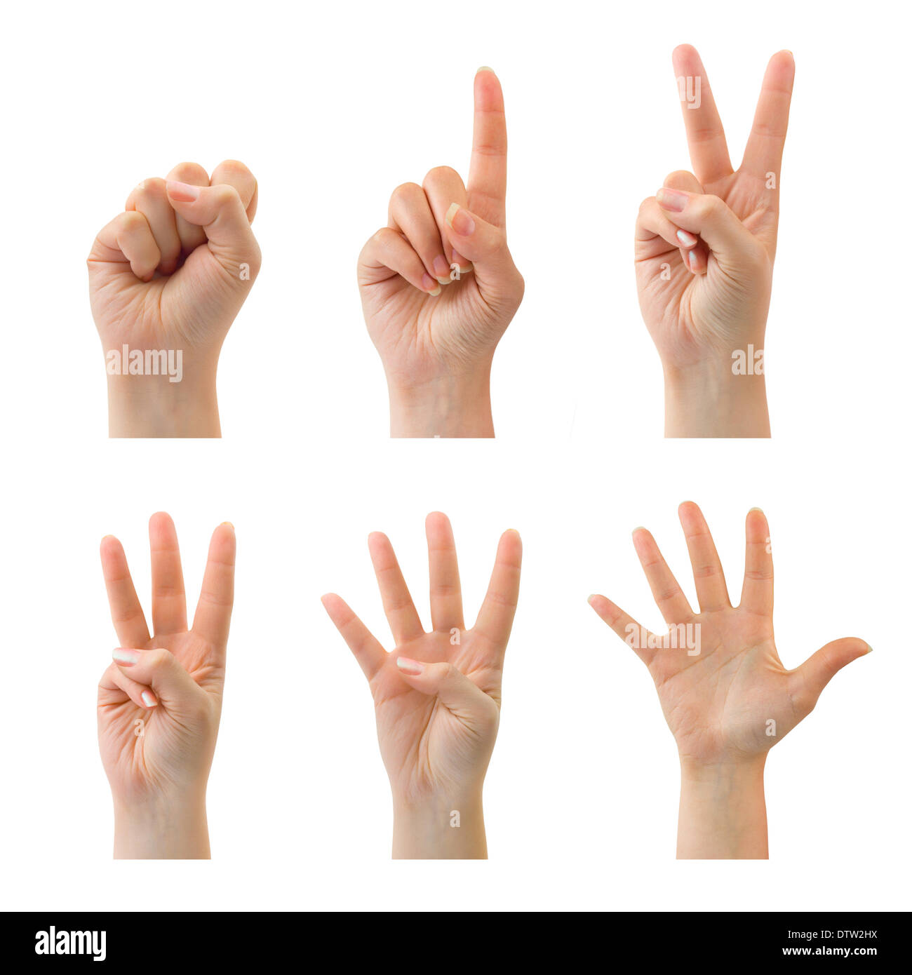 Counting hands (0 to 5) - Stock Image