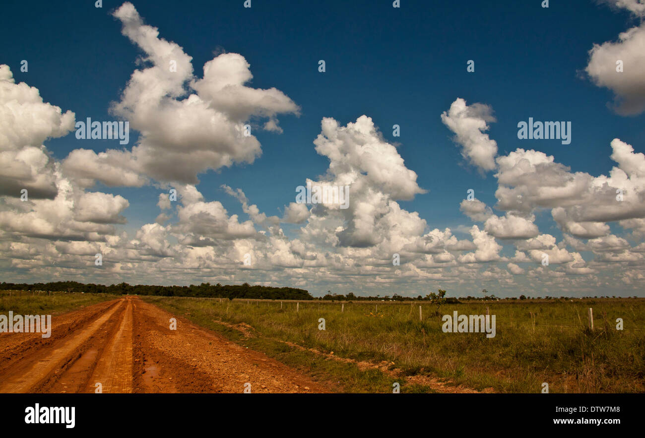 Unpaved road leading to the east of the country. Puerto Gaitan, Meta, Colombia. - Stock Image
