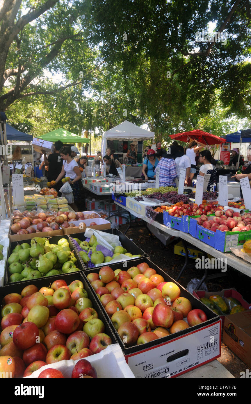 Fruit stall at outdoor weeked market in the shade of enormous trees, West End, Brisbane, Queensland, Australia. - Stock Image