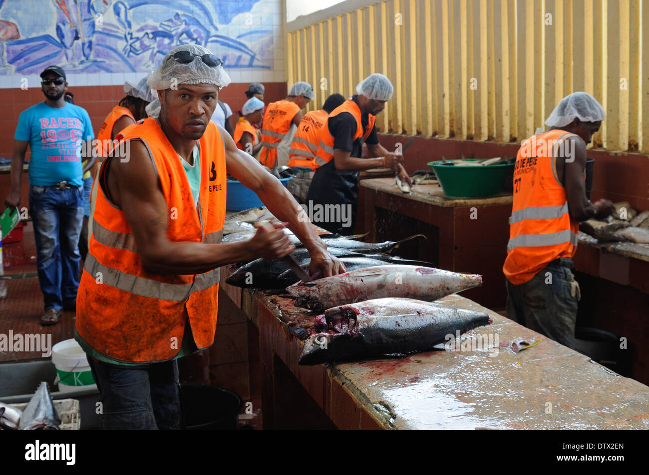 Fish being prepared for sale in the fish market, Mindelo, Cape Verde Islands Stock Photo