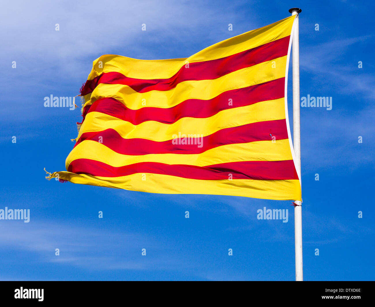 Catalonian Flag against a bright blue sky. The flag of Catalonia shines in the sun on a white pole. Slightly frayed. - Stock Image