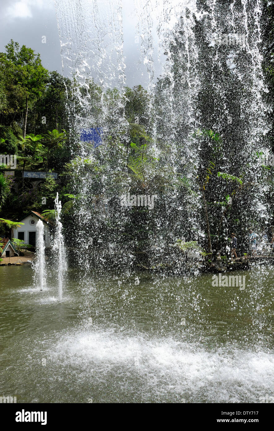 Funchal Madeira Portugal monte palace gardens waterfall curtain falling into lake - Stock Image