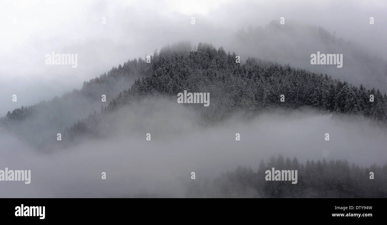 Dolomiti, snow, mountains, church, stone, winter, cold, wild, landscapes, colors, fog, animals, cows, forest, trees, leaves - Stock Image