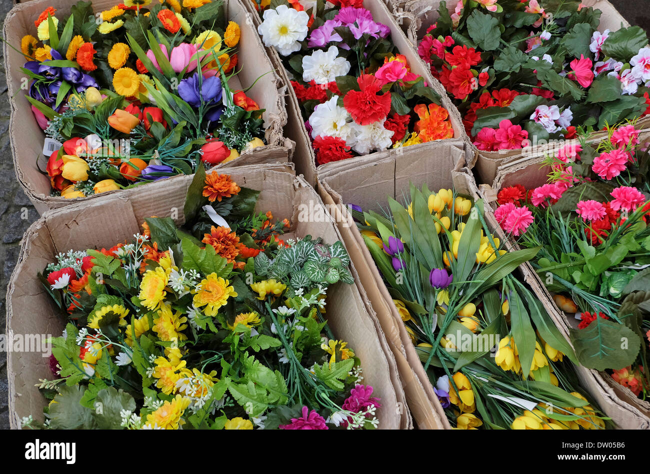 colourful cultivated cut flowers in cardboard boxes - Stock Image