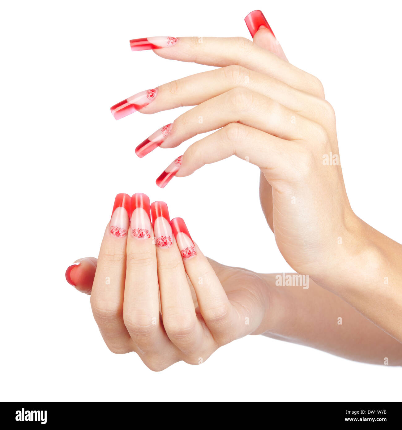 Hands with red french acrylic nails manicure and painting isolated ...