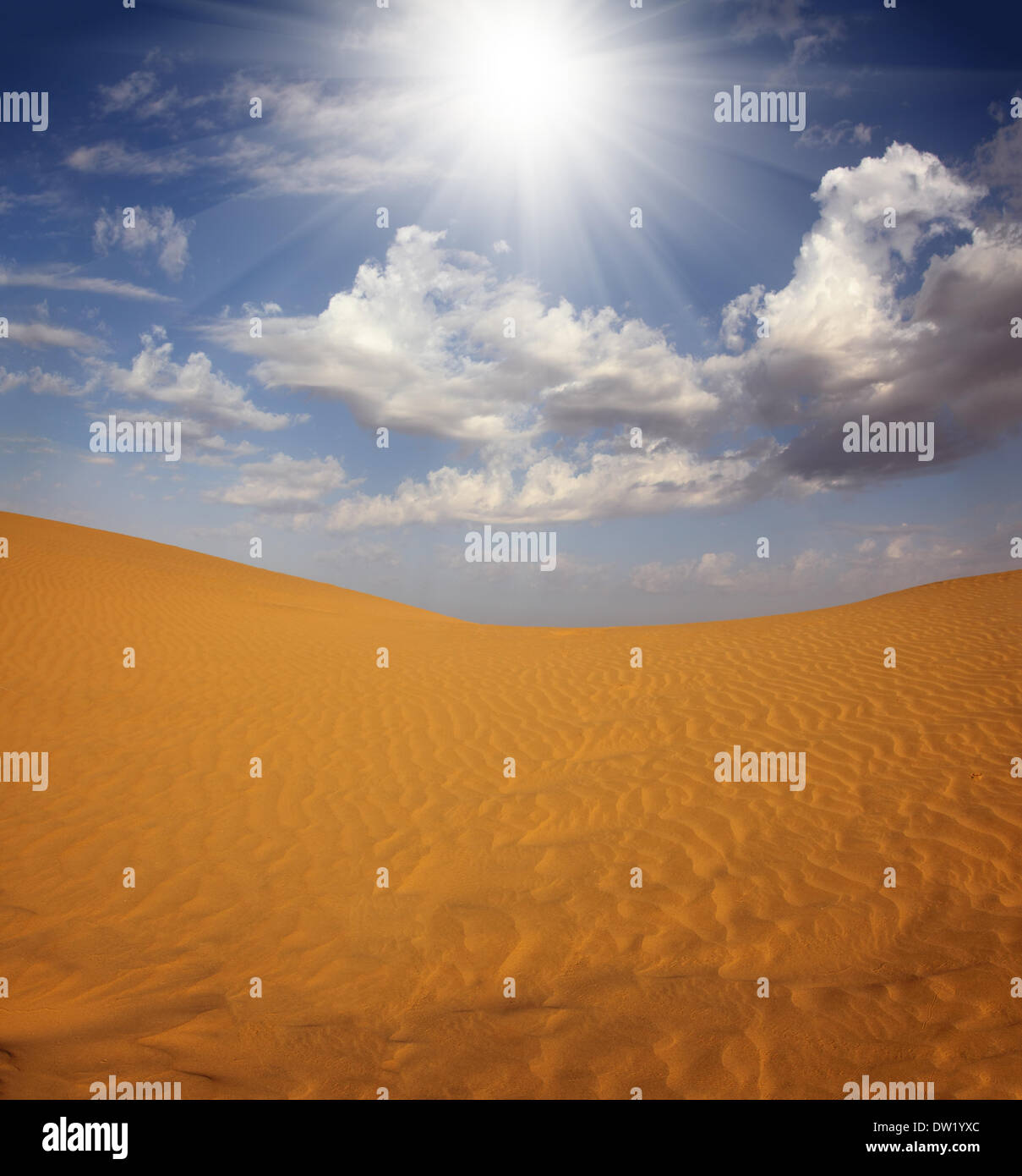 landsape in Tar desert India - Stock Image