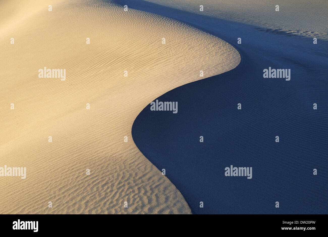 Elk248-2263 California, Death Valley National Park, Stovepipe Wells, sand dunes - Stock Image