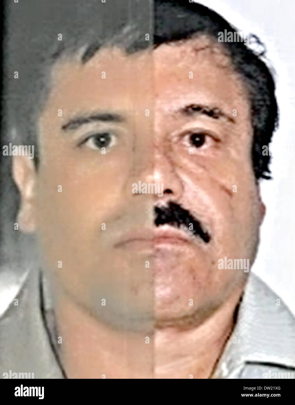 Mexico City. 25th Feb, 2014. Combo photo released by Mexico's Attorney General Office (PGR) with identification mapping marks made by the source to point out similarities in face measurements, shows Joaquin 'El Chapo' Guzman, using images made from his 1993 and 2014 detentions. The Sinaloa Cartel leader was subjected to a buccal swab, a phisiognomic identity study and a test of 10 fingerprints Credit:  Mexico's Attorney General Office/Xinhua/Alamy Live News - Stock Image