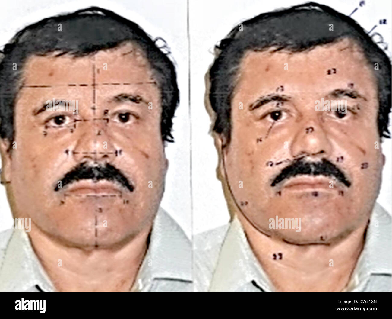 Mexico City. 25th Feb, 2014. Image provided by Mexico's Attorney General Office (PGR), on Feb. 25, 2014, show Joaquin 'El Chapo' Guzman, during the scientific tests to prove his identity, in Mexico City, capital of Mexico. The Sinaloa Cartel leader was subjected to a buccal swab, a phisiognomic identity study and a test of 10 fingerprints. Federal courts in Mexico Tuesday formally charged Joaquin 'El Chapo' Guzman, the captured leader of the Sinaloa drug cartel, with organized crime and drug trafficking. Credit:  Mexico's Attorney General Office/Xinhua/Alamy Live News - Stock Image