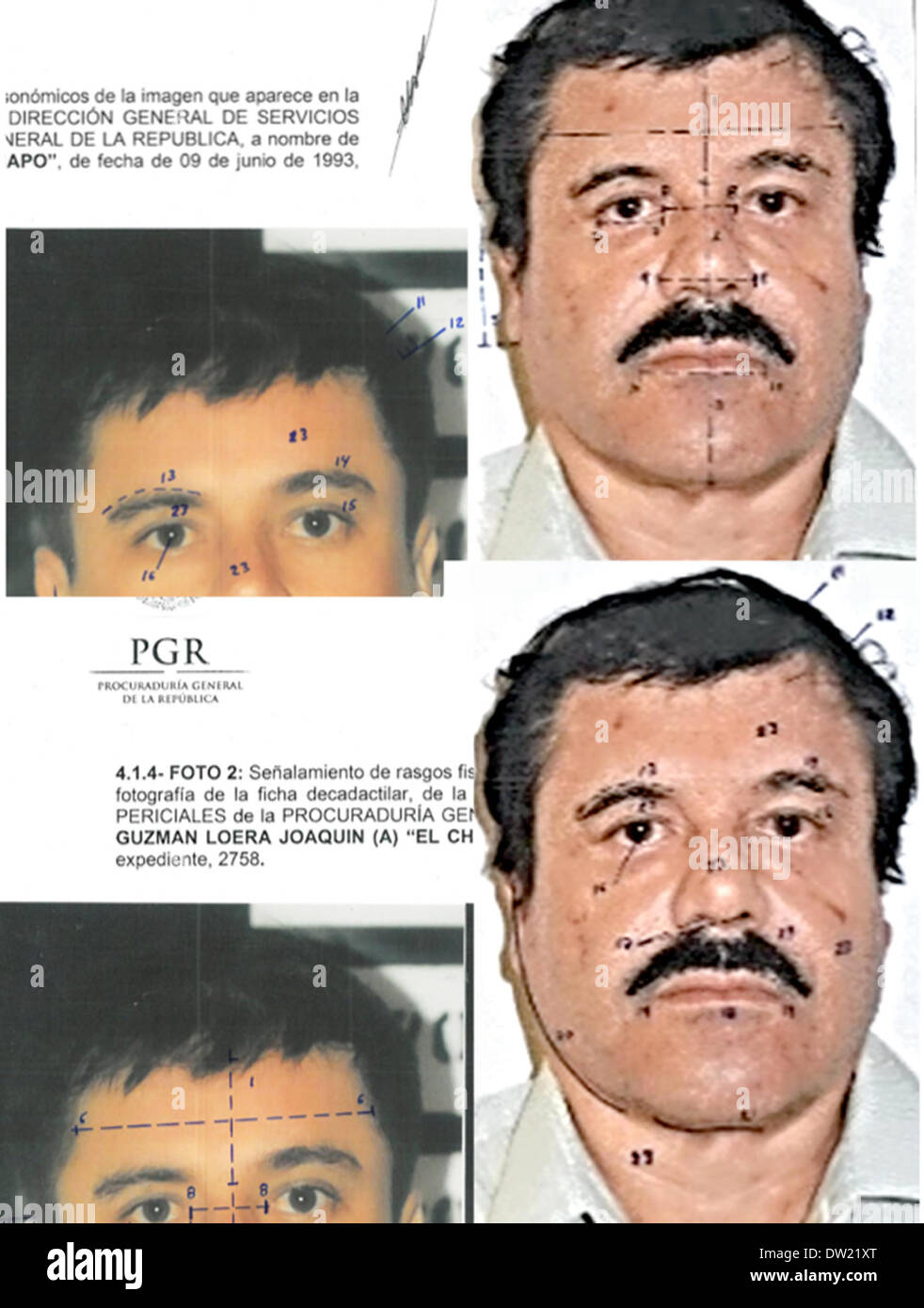 Mexico City. 25th Feb, 2014. This combo of photographs released by Mexico's Attorney General Office (PGR) with identification mapping marks made by the source to point out similarities in face measurements, shows Joaquin 'El Chapo' Guzman, using images made from his 1993 and 2014 detentions. The Sinaloa Cartel leader was subjected to a buccal swab, a phisiognomic identity study and a test of 10 fingerprints Credit:  Mexico's Attorney General Office/Xinhua/Alamy Live News - Stock Image
