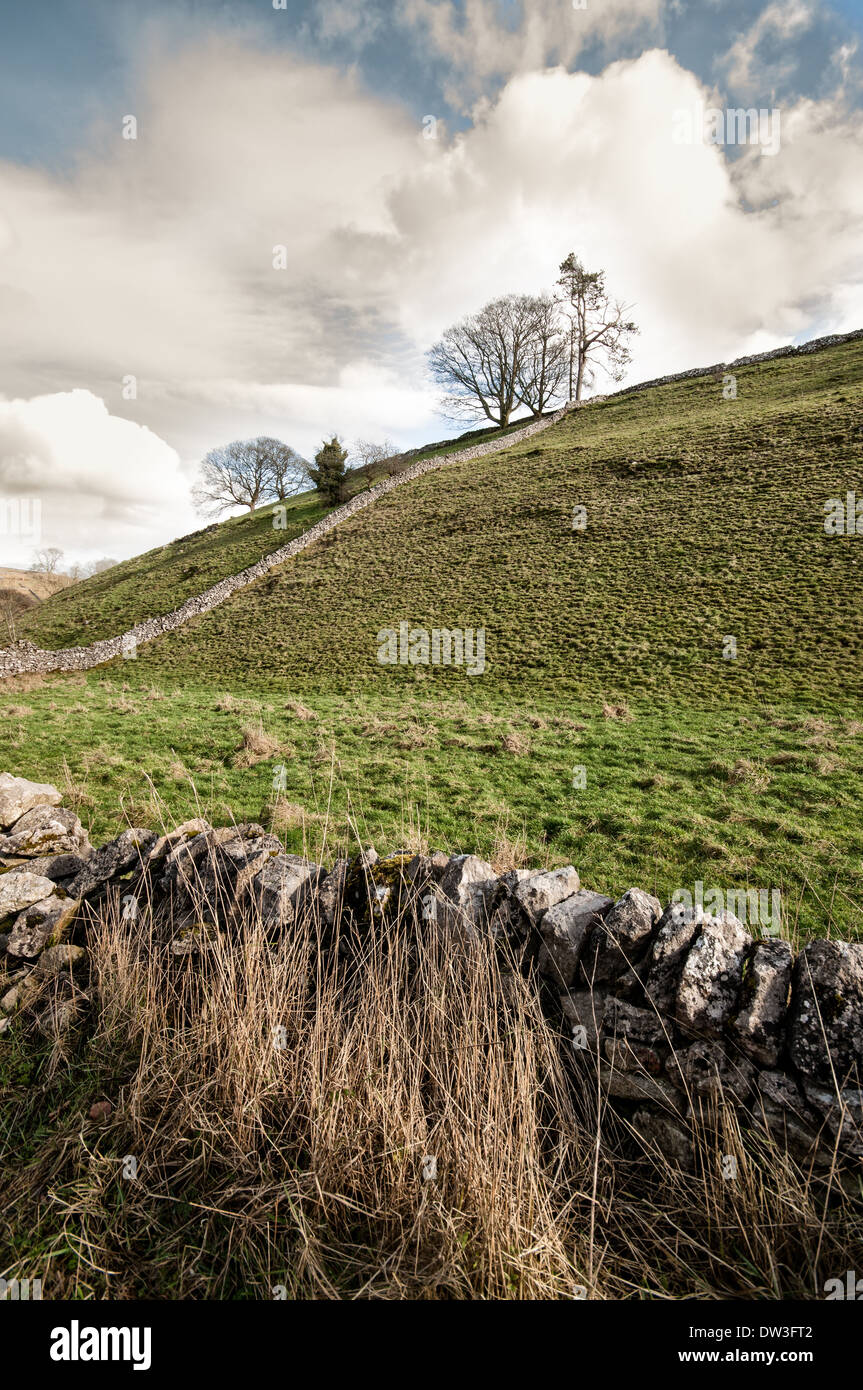 Hillside and dry stone wall in Dovedale, Peak District National Park, UK Stock Photo