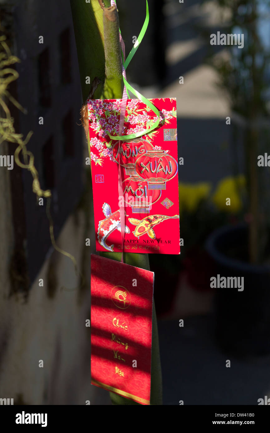 Vietnamese happy new year gift envelopes hanging on lucky bamboo. Red envelopes or packets are used to give monetary gifts .