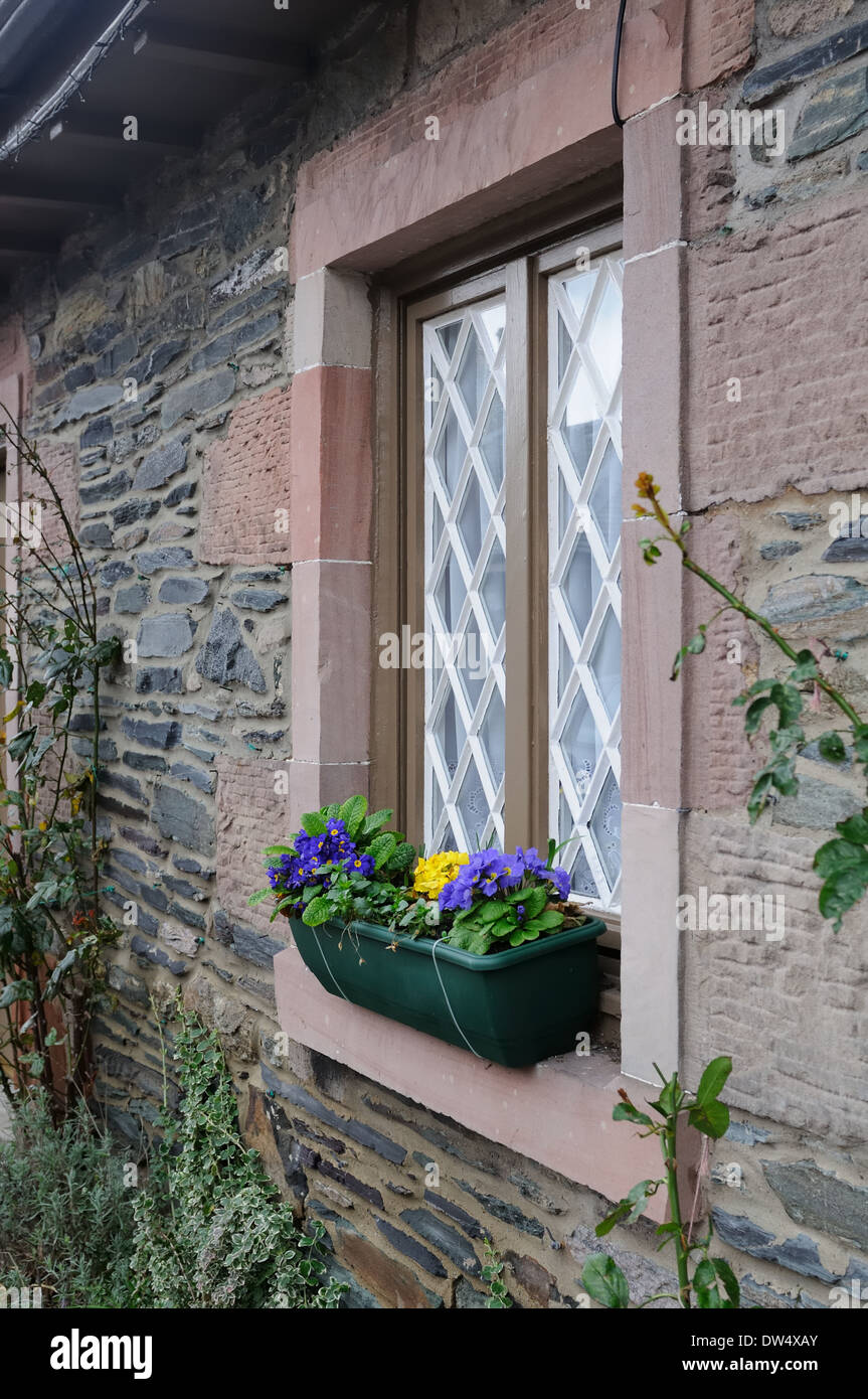 Stone cottage with window box in Luss - Stock Image