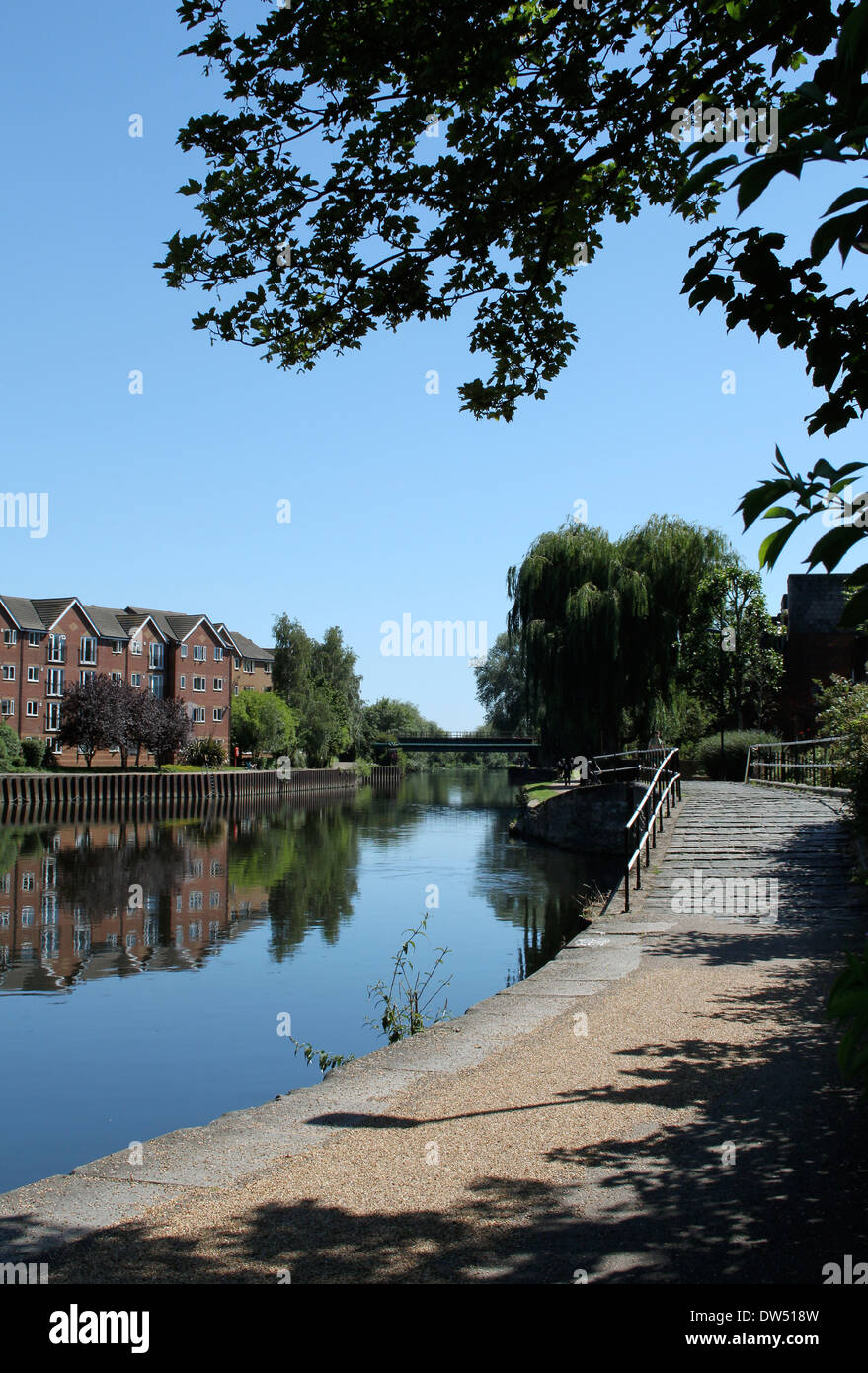 A calm canal running through Tottenham Hale, London. - Stock Image