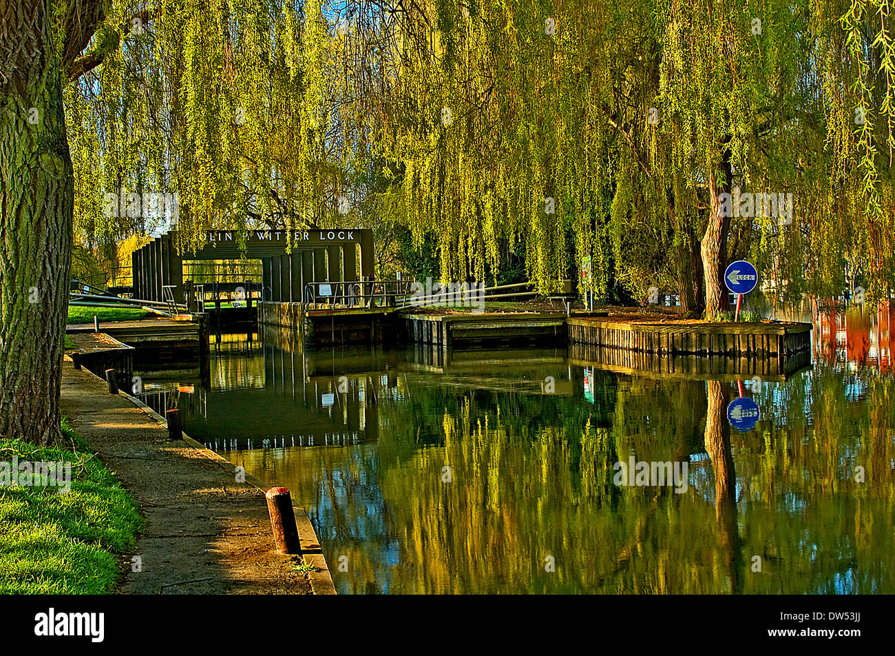 Colin P Witter lockgates on the River Avon at Stratford upon Avon is surrounded by willow trees. - Stock Image