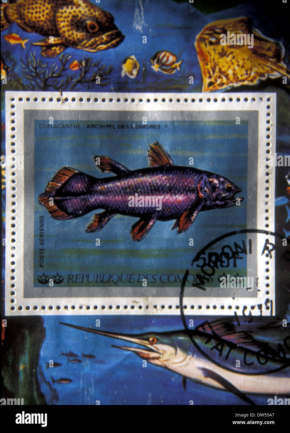 Commemorative postage stamp featuring the coelacanth or prehistoric fish found in Indian Ocean off the Comores - Stock Image