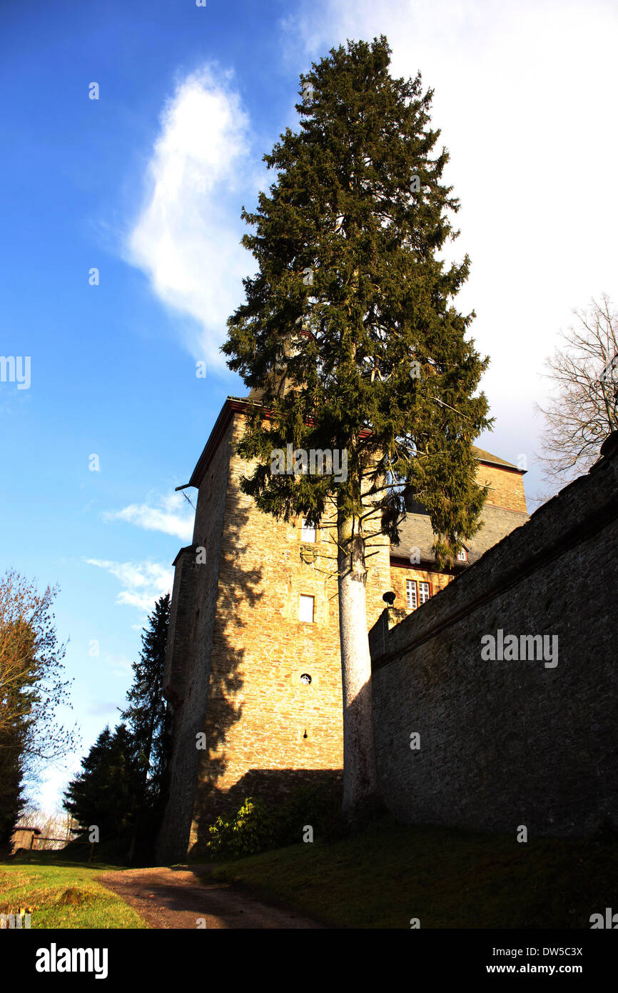 Tower Sidewall with Pinetree at the Castle Schnellenberg in Attendorn Stock Photo
