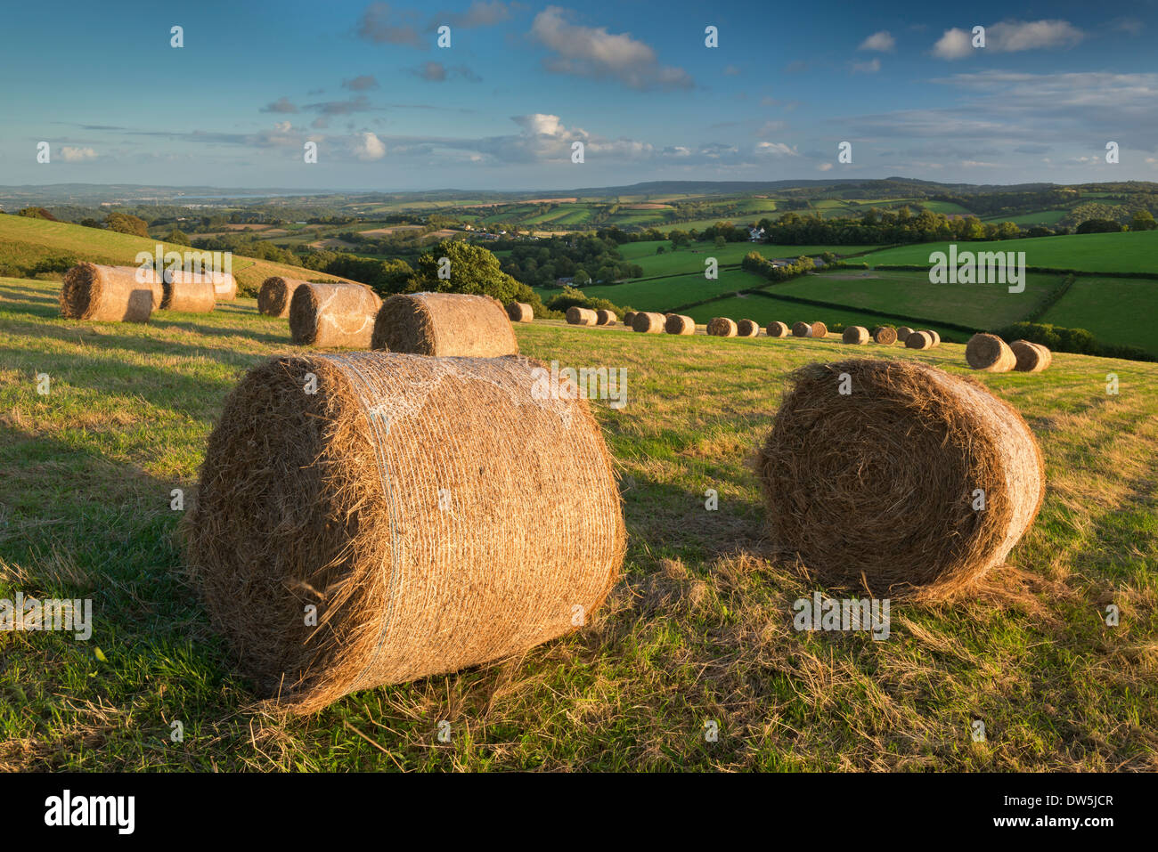 Hay Bales in the rolling fields of Mid Devon, England. Autumn (September) 2012. - Stock Image