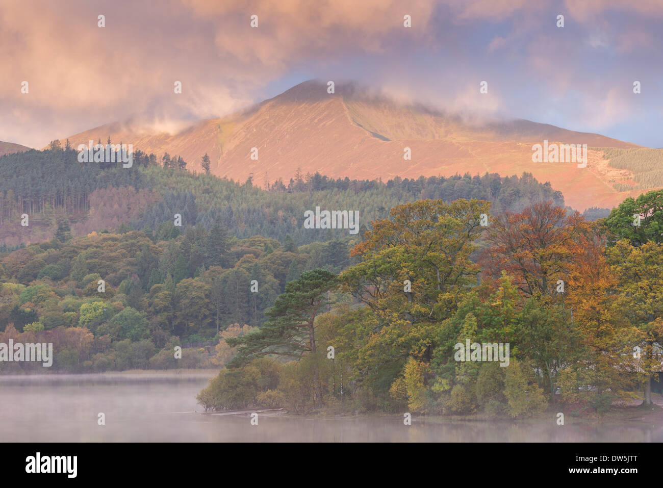 Autumn foliage on the banks of Derwentwater at dawn, Lake District, Cumbria, England. Autumn (October) 2012. - Stock Image