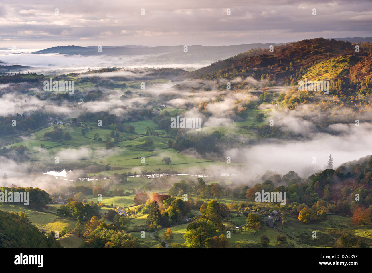 Patches of morning mist float above countryside near the River Brathay, Lake District National Park, Cumbria, England. - Stock Image