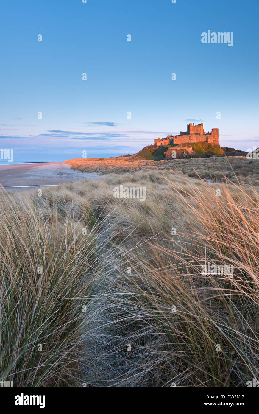 Evening sunlight illuminates Bamburgh Castle, Northumberland, England. Spring (April) 2013. - Stock Image