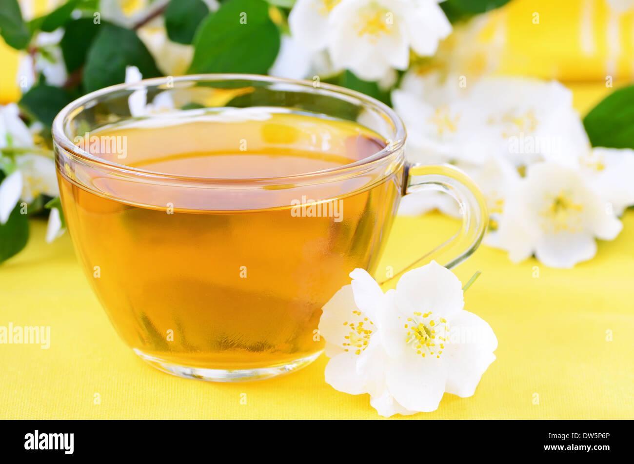 Yellow jasmine flower stock photos yellow jasmine flower stock herbal tea with jasmine flowers stock image izmirmasajfo Images