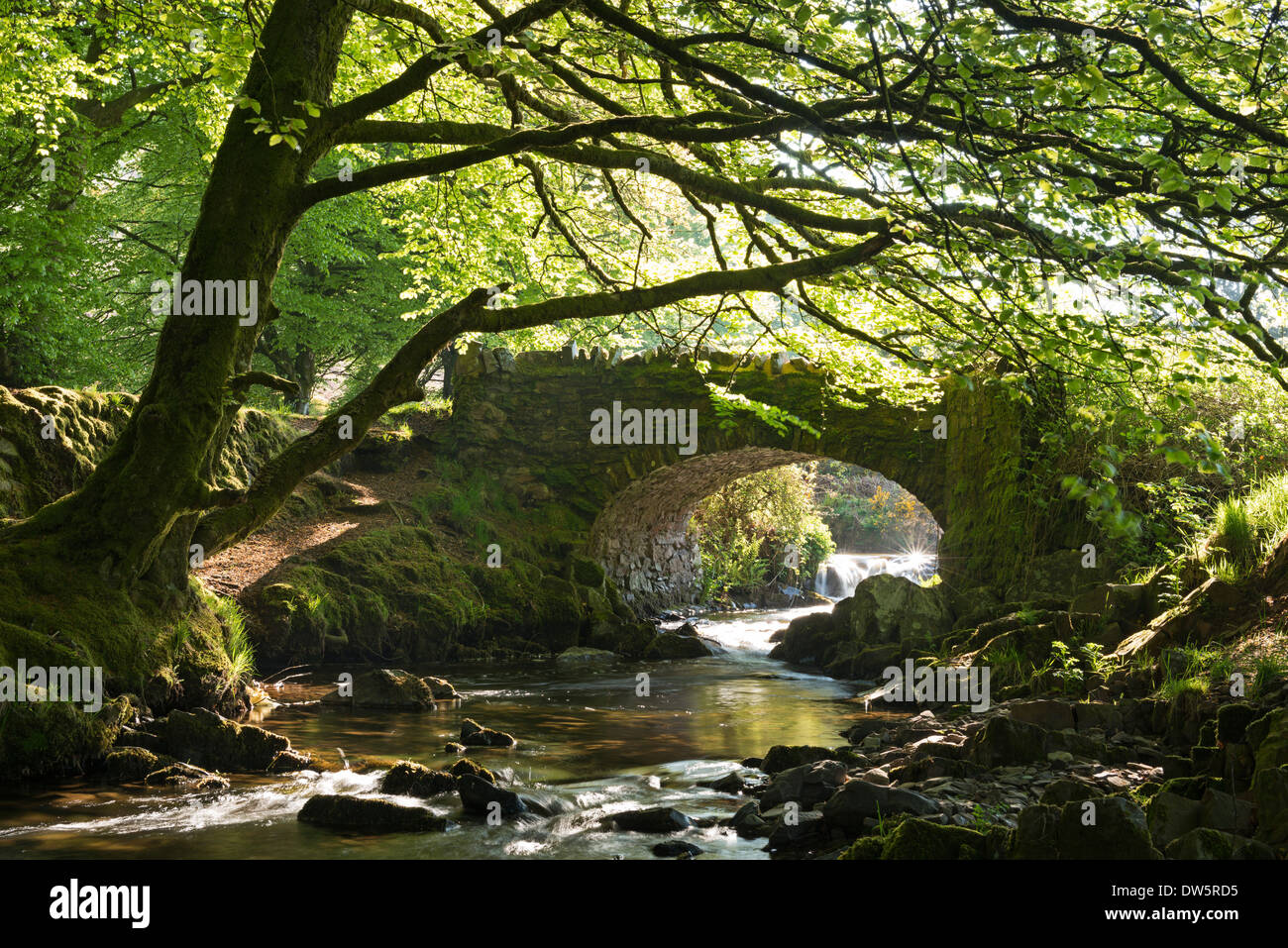 Picturesque Robber's Bridge near Oare, Exmoor, Somerset, England. Spring (May) 2013. - Stock Image