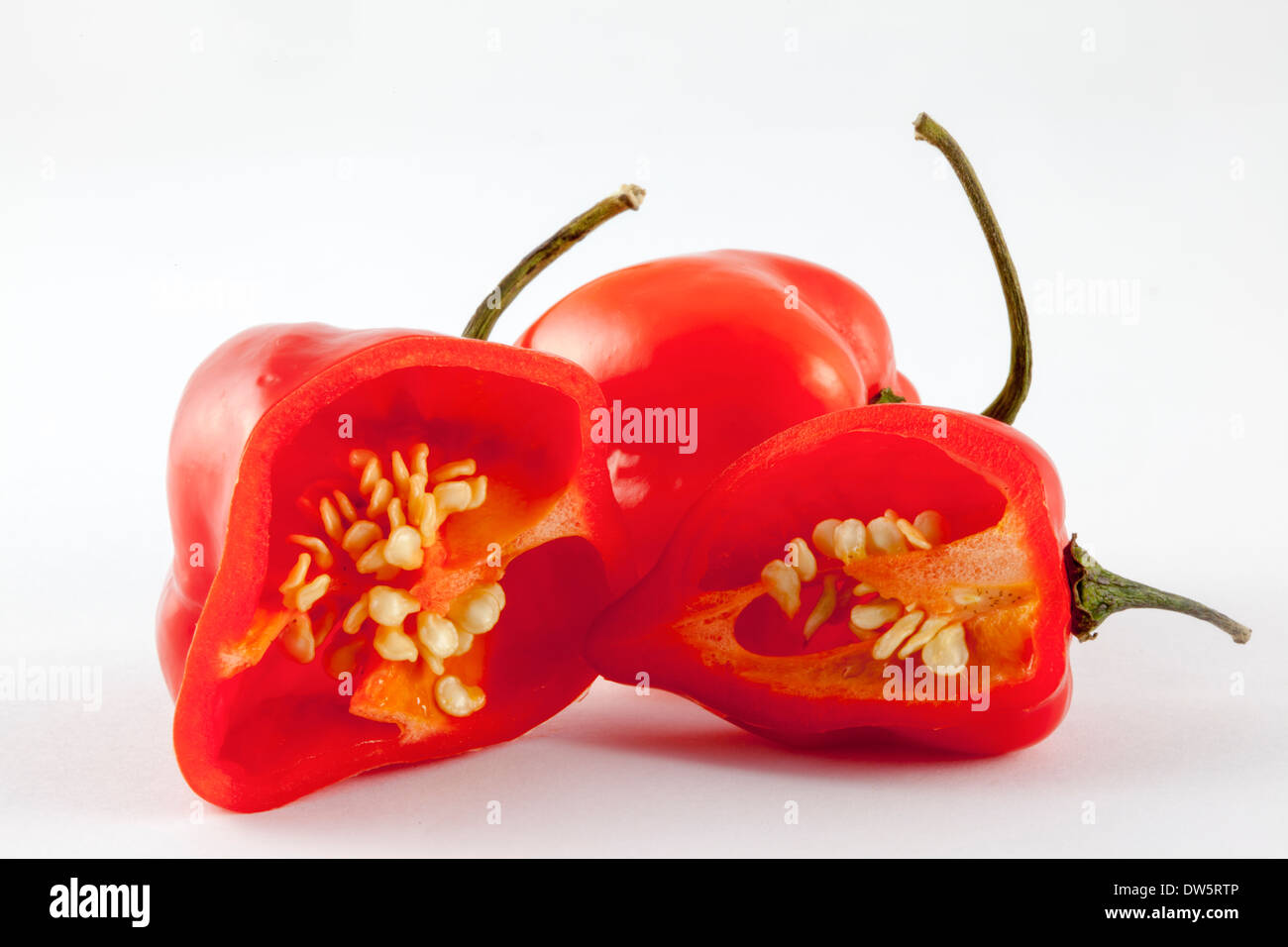 Two red,very hot Habanero chilli peppers from  the C. Chinense cultivar of the Capsicum family - named after Havana Stock Photo