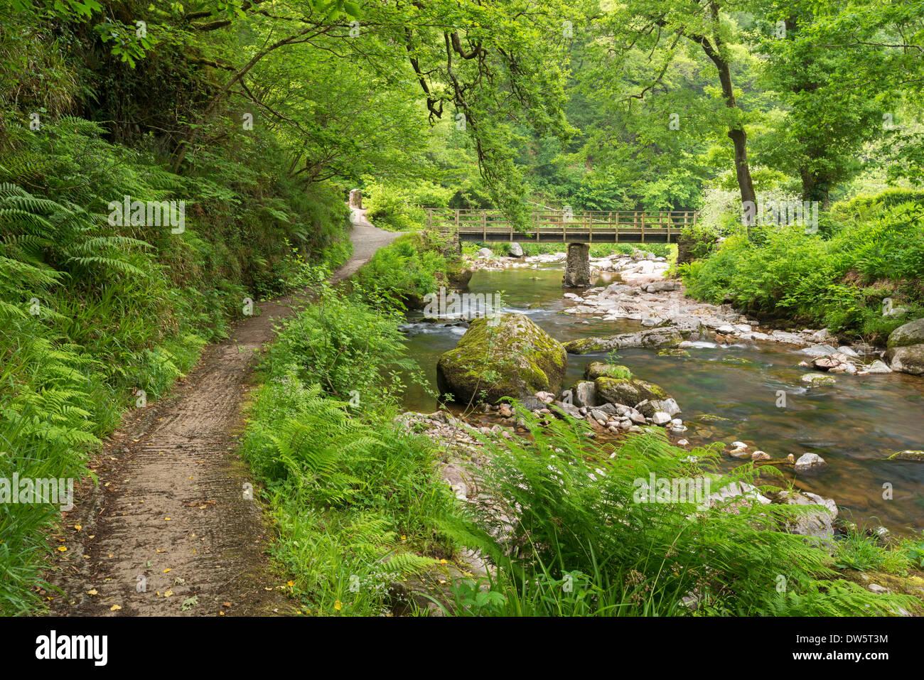 East Lyn River at Watersmeet, Exmoor National Park, Devon, England. Summer (June) 2013 - Stock Image