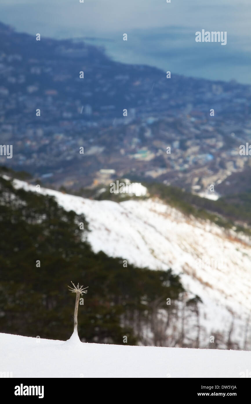 wintry mountains landscape. outdoor shot - Stock Image