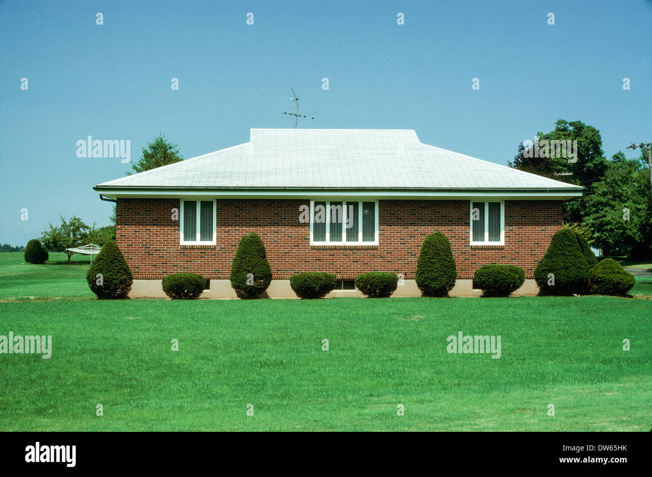 suburban house sculpted shrubs neat orderly - Stock Image