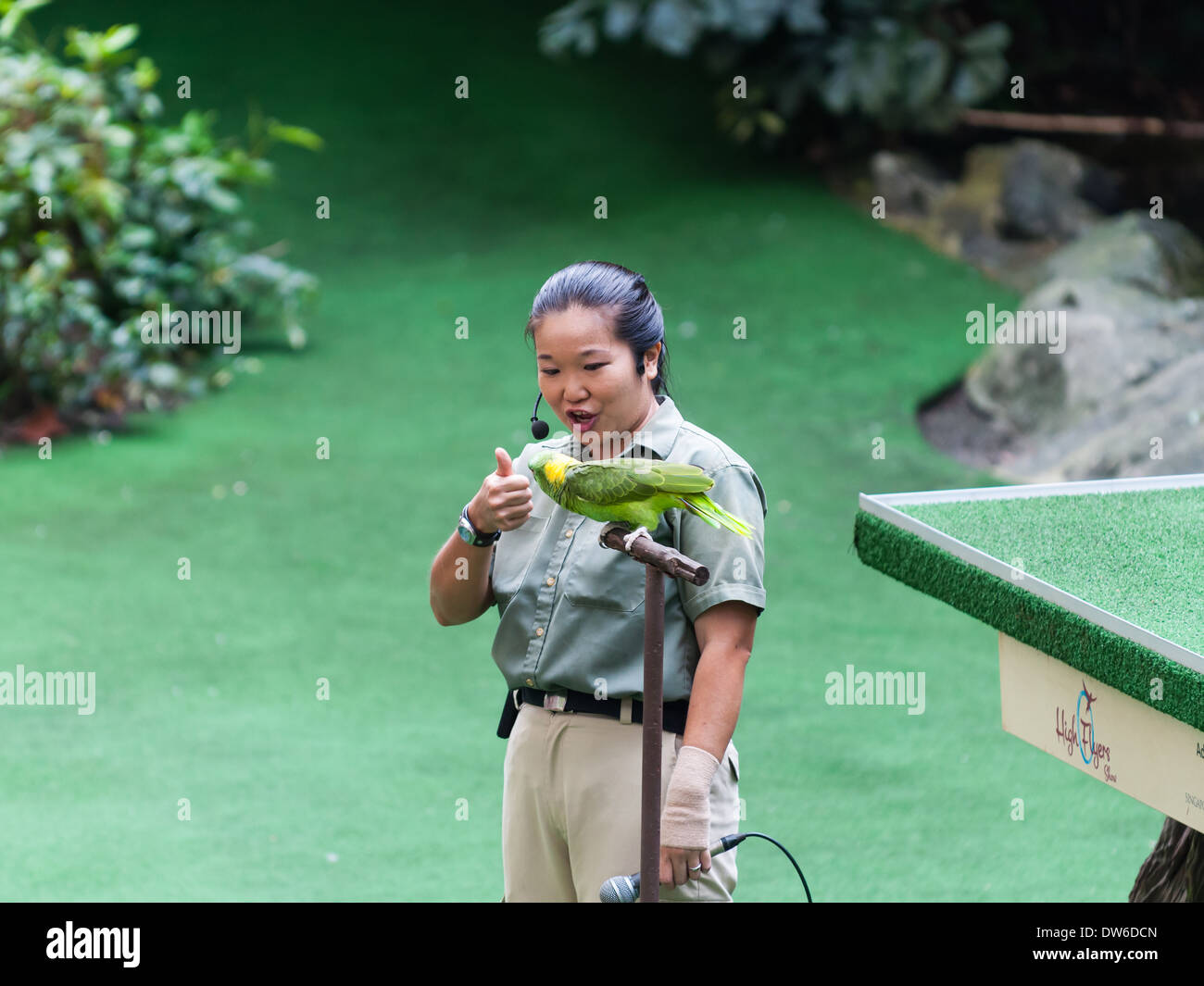 Bird show at the Singapore Zoo. - Stock Image