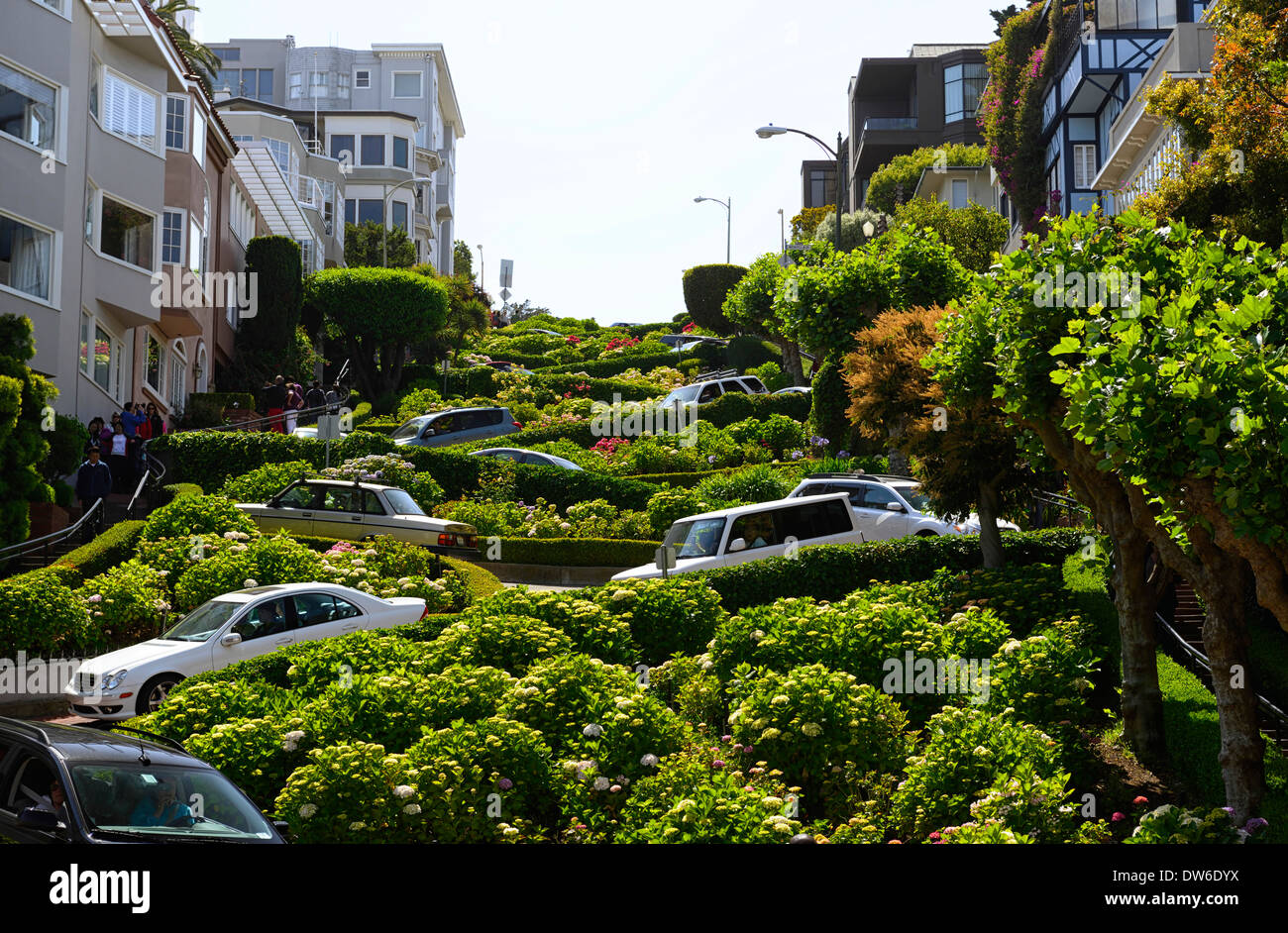 Lombard street direct traffic cruise cruising crooked crookedest twist turn steep bends bendy acute tight twist twisty marshall - Stock Image