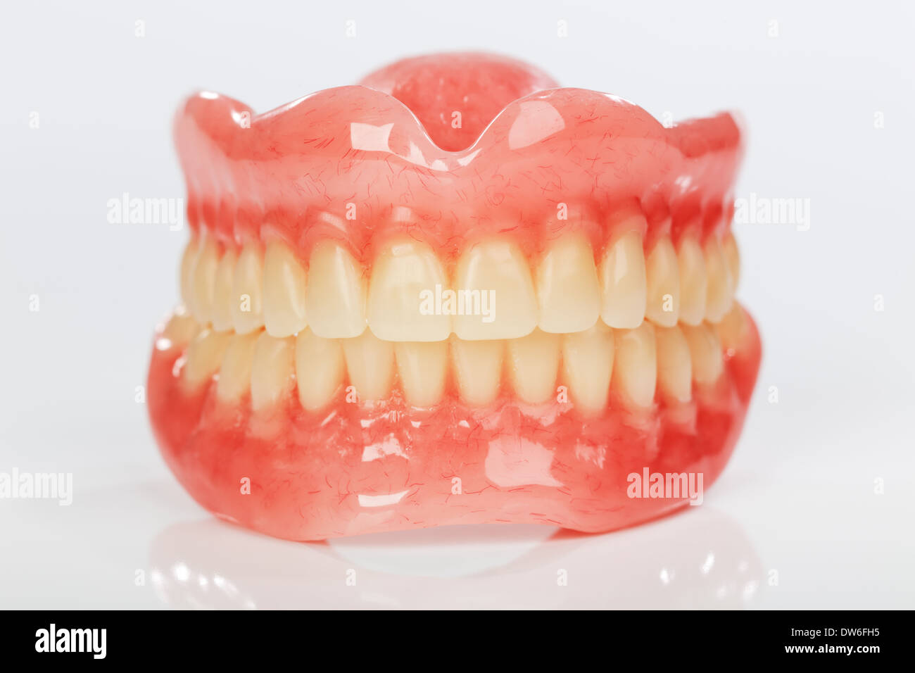 A set of dentures on a shiny white background - Stock Image