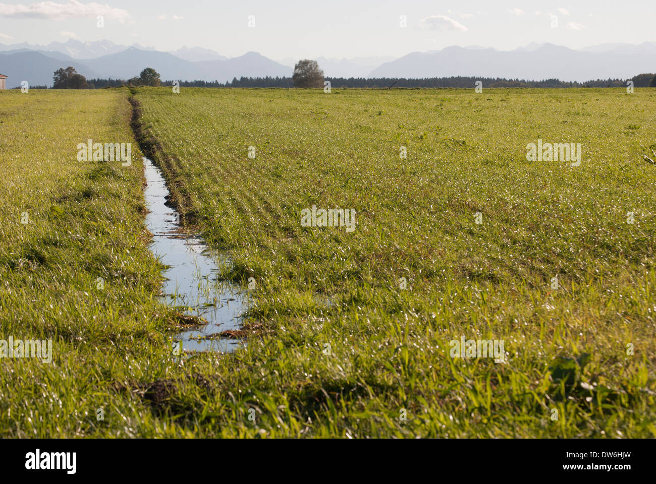 View abundant green farm land with irrigation - Stock Image