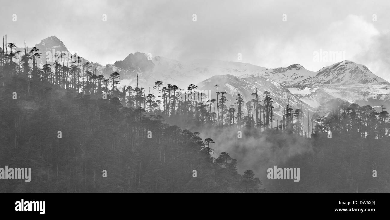 Himalayan landscape around the village of Merak on Merak Sakteng trek, Eastern Bhutan - Stock Image