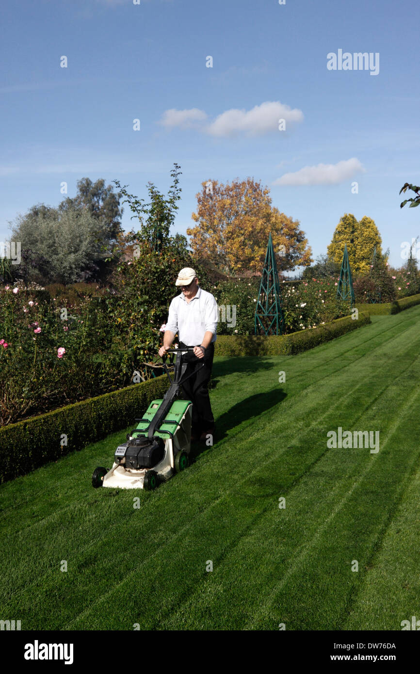 MALE GARDENER MOWING A LAWN. - Stock Image
