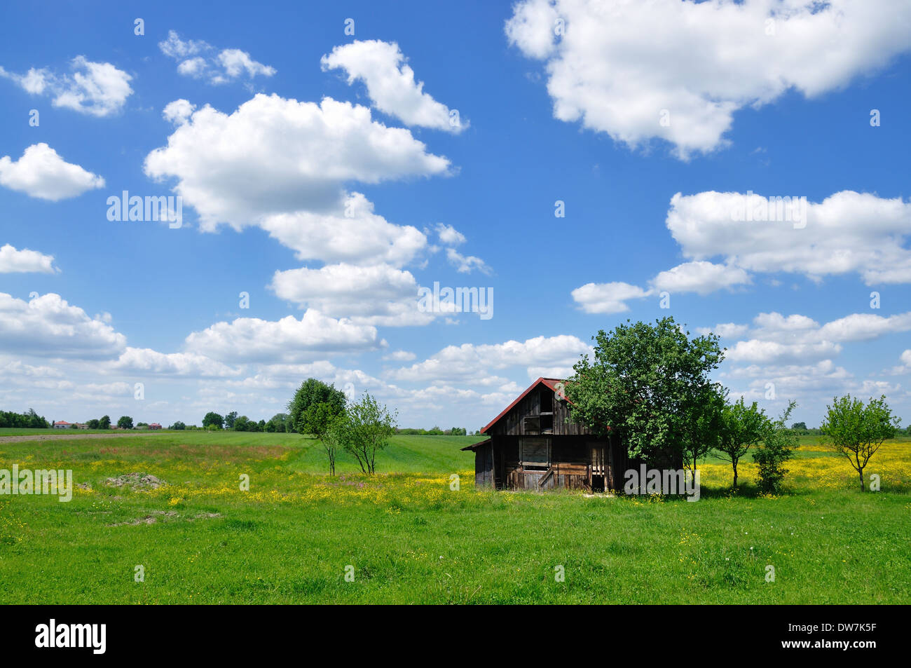 Landscape with old wooden cabin - Stock Image