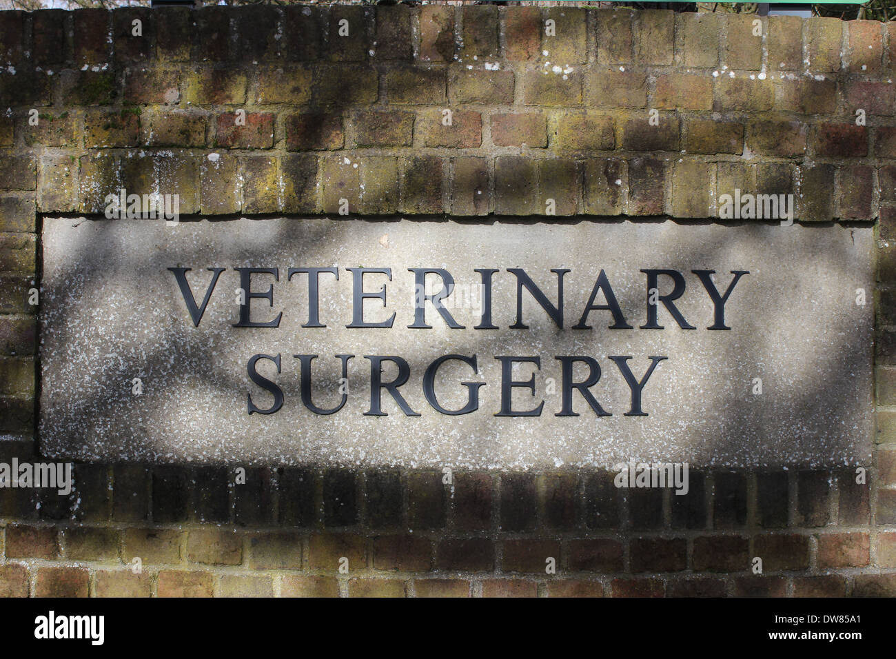 Sign at entrance to veterinary surgery in Donnington - Stock Image