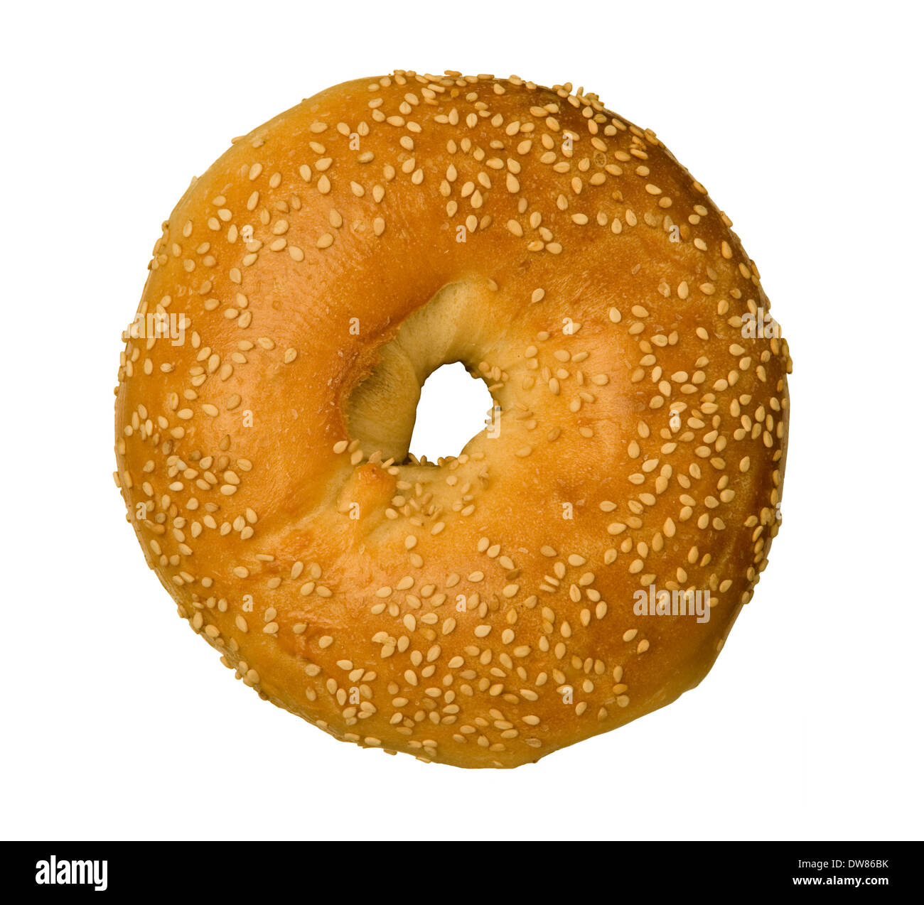 Sesame Seed Bagel isolated against white background - Stock Image