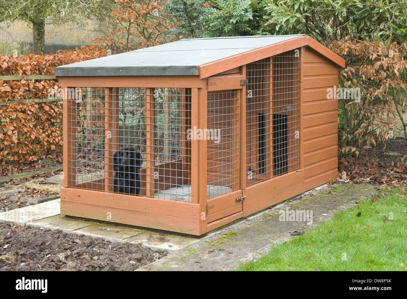 Dog Kennel Design Plans