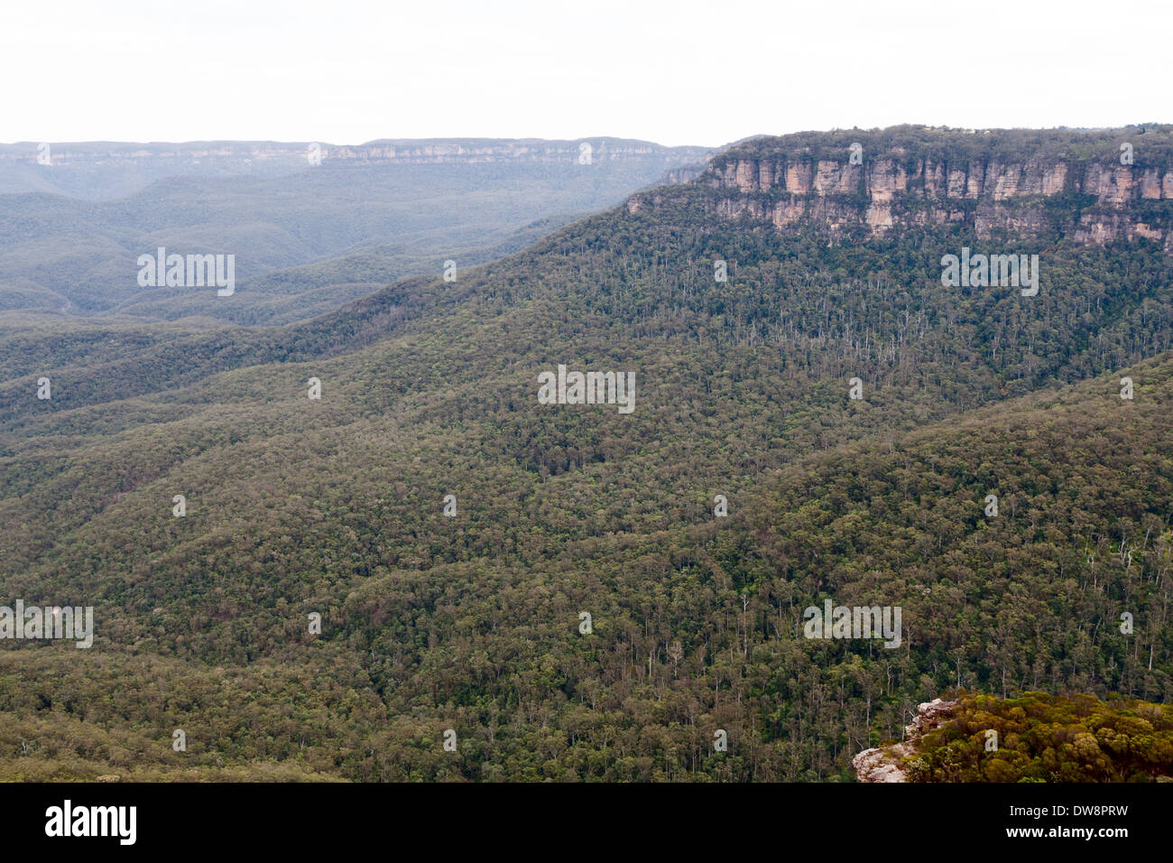 Blue Mountains, Sydney from Kings Tableland lookout - Stock Image