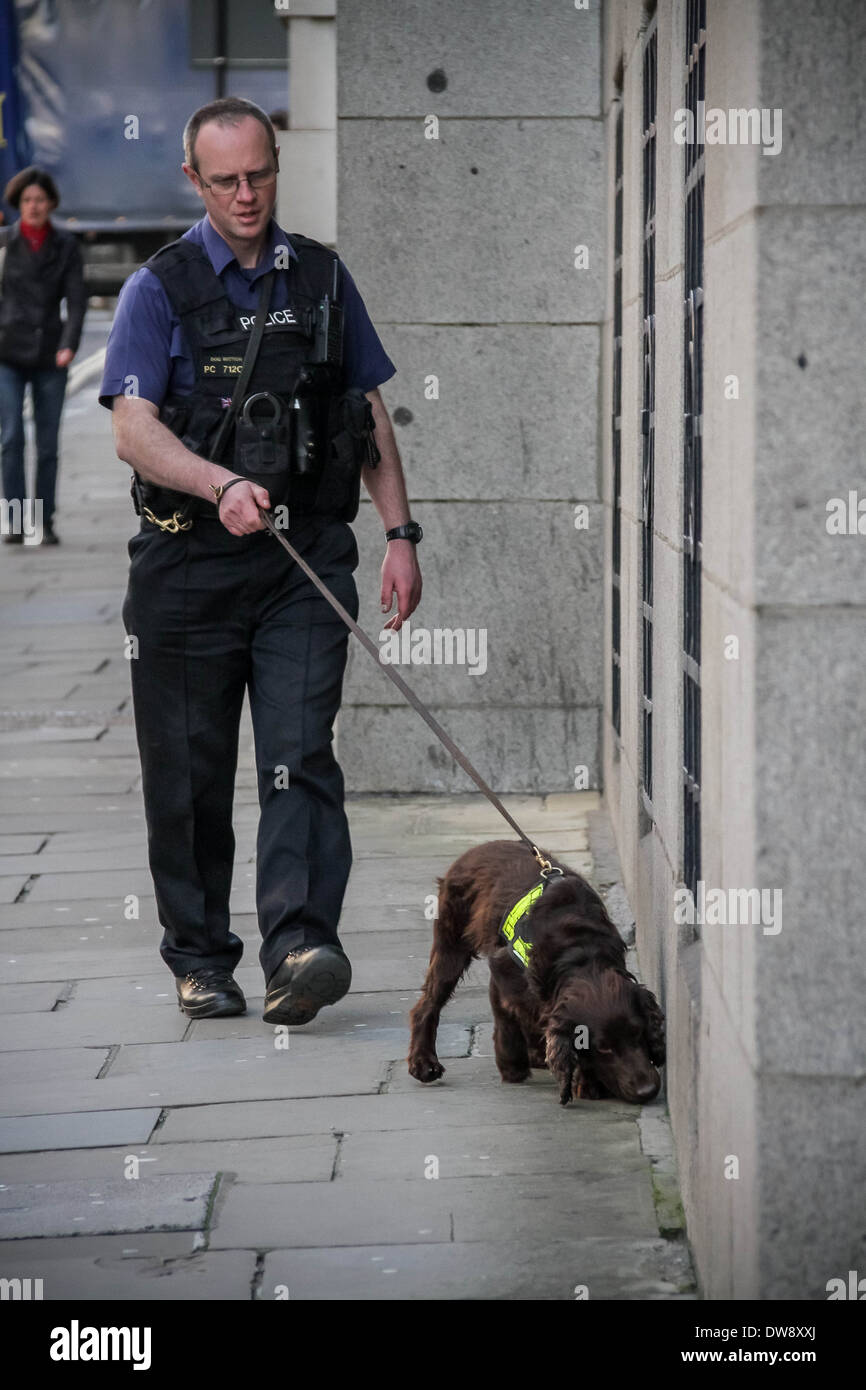 Police sniffer dog in action outside Old Bailey court in London - Stock Image