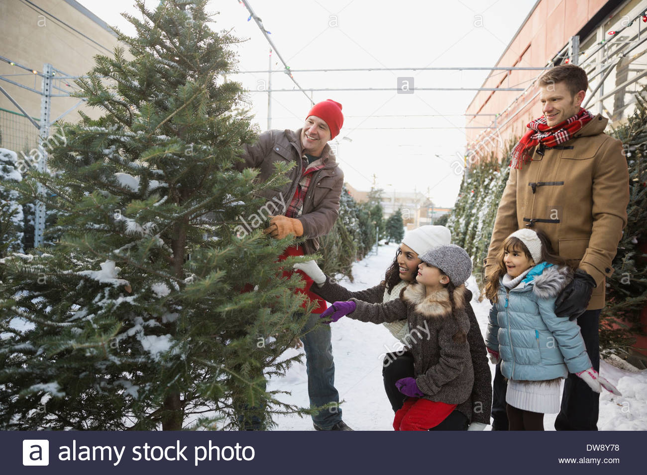 Family shopping for Christmas tree - Stock Image