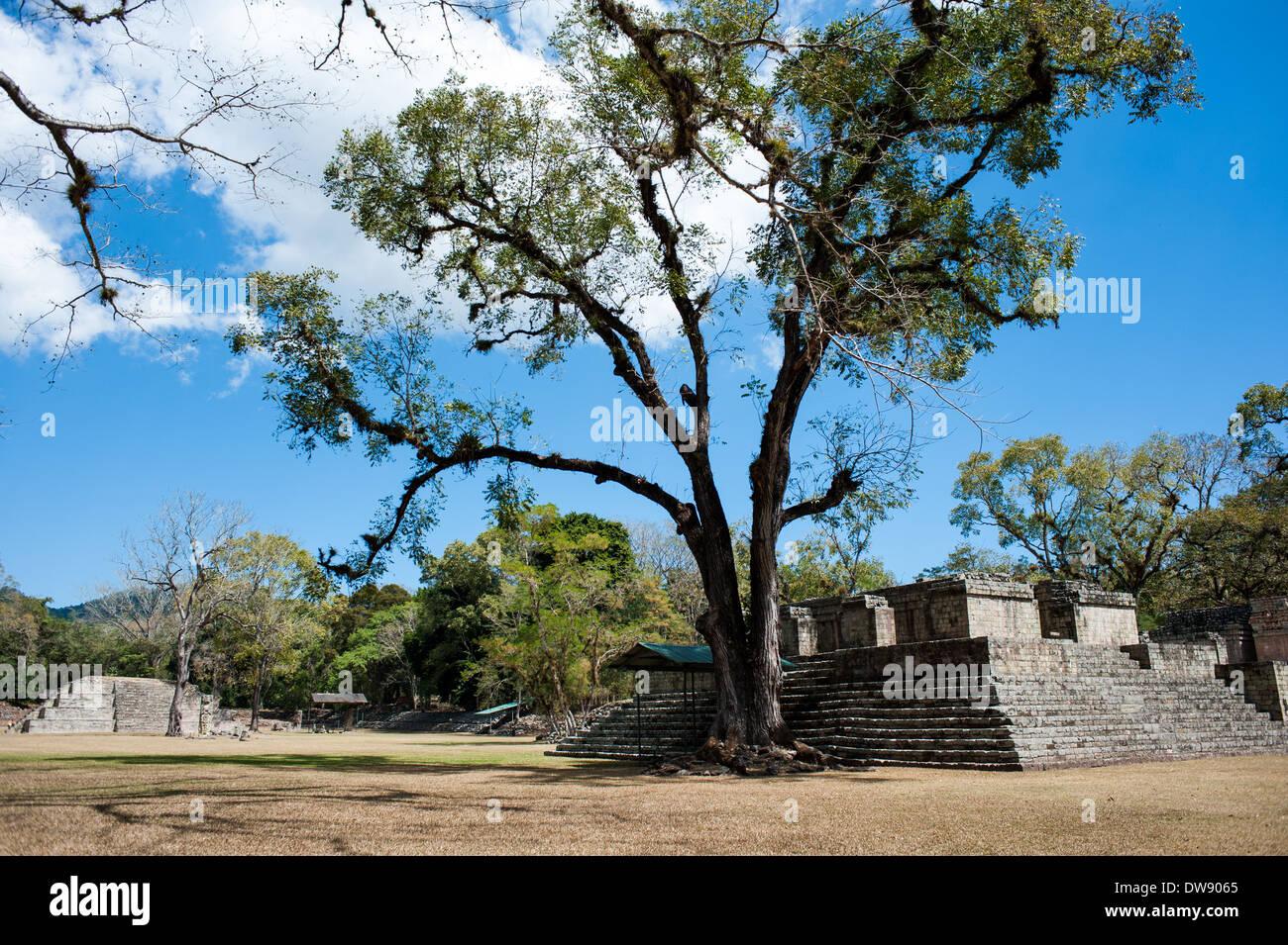 Ruinas de Copán archaeological park in Honduras - Stock Image
