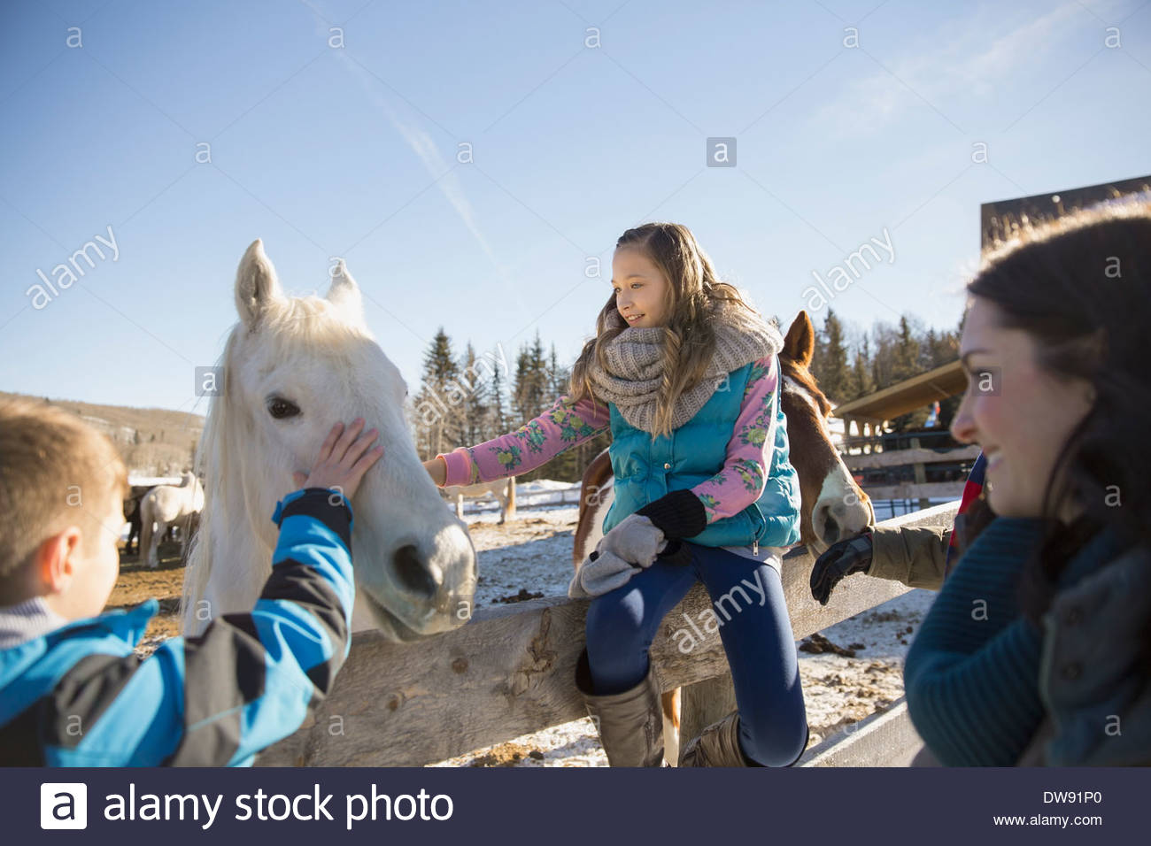 Siblings stroking horse on ranch during vacation - Stock Image