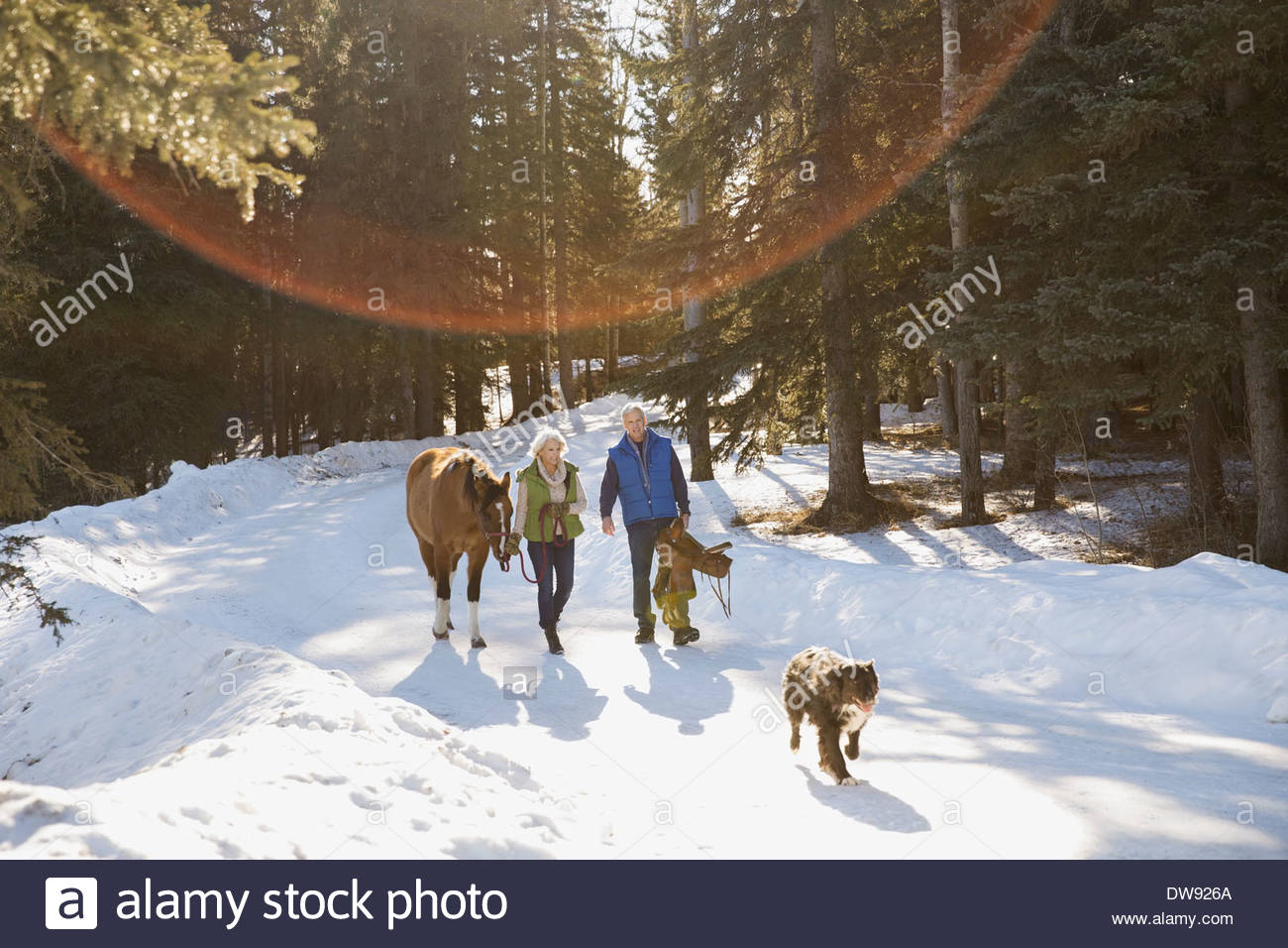 Couple with horse and dog walking in snow - Stock Image