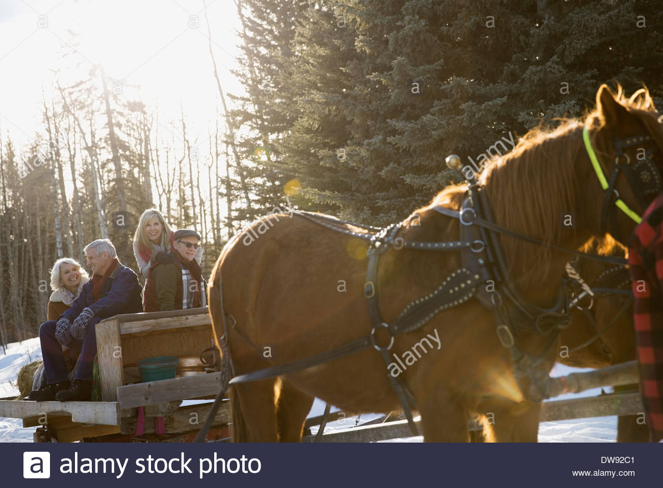 Friends riding on horse-drawn sleigh Stock Photo